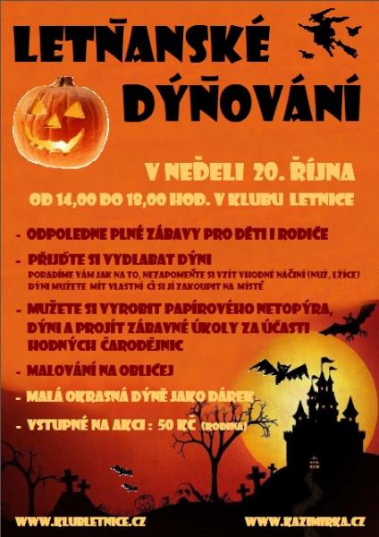 dynovani_2013