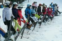 zimni_tabor_1-turnus2013_69.jpg